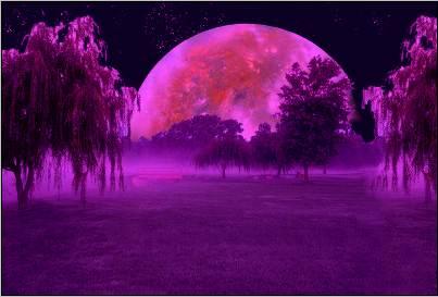 fond ecran fantastique the darkness purple. Black Bedroom Furniture Sets. Home Design Ideas